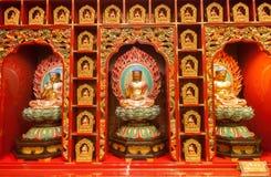De Chinese Tempel van het de Tandoverblijfsel van Boedha Royalty-vrije Stock Foto's