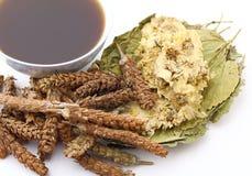 De Chinese traditionele drank van de kruidengeneeskunde Stock Afbeeldingen