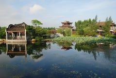 De Chinese tuin van de lotusbloemvijver Stock Afbeelding