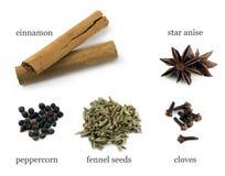 De Chinese vijf ingrediënten van het kruidpoeder Stock Afbeeldingen