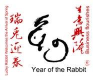 De Chinese Woorden van het Festival van de Lente stock illustratie