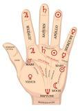 De chirologie van de palm. Royalty-vrije Stock Fotografie