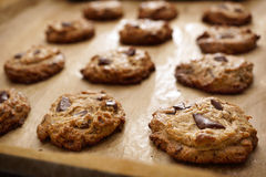 De Chocolade Chip Cookies On Baking Sheet van de FlourlessPindakaas Stock Foto's