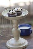 De chocolade Cupcake met twee stemt minibal Royalty-vrije Stock Foto's