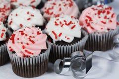 De chocolade Cupcakes bestrooit Royalty-vrije Stock Fotografie