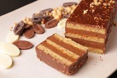 De chocolade en de Hazelnoot omfloersen Cake Stock Afbeelding