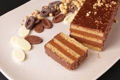 De chocolade en de Hazelnoot omfloersen Cake Stock Afbeeldingen