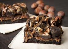 De chocoladecake van de brownie met noten Stock Afbeeldingen