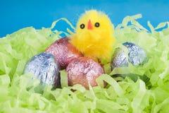 De chocoladeeieren van Pasen en een gele kip. Stock Foto's