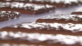 De chocoladefabriek, chocolade beweegt zich langs de transportband stock video