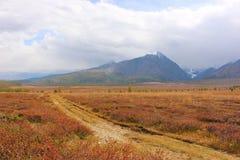 De Chuya-steppe Stock Foto