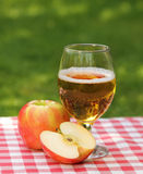 De cider en de appelen van de appel royalty-vrije stock foto's