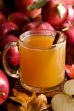 De cider van de appel Stock Foto