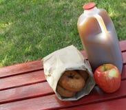 De cider van de appel en donuts royalty-vrije stock foto's