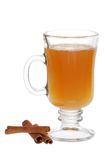 De Cider van de appel en Pijpjes kaneel stock afbeelding