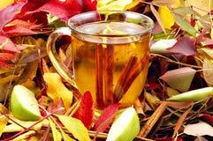 De Cider van de herfst stock foto