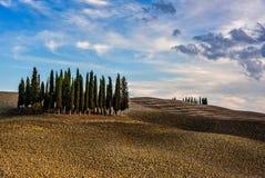De Cipresheuvel van Toscanië Italië Royalty-vrije Stock Foto's