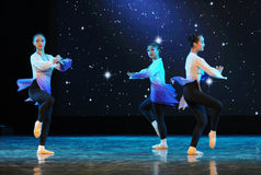 De circumgyrate-volkstrainingscursus van de dans op:leiden-basisdans Stock Afbeelding