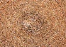 De cirkel met stro bedekt Stock Afbeeldingen