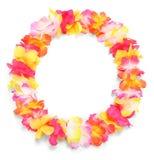 De cirkel van de bloem. Royalty-vrije Stock Foto