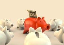 De cirkel van Pigbank met honderd dollars Stock Afbeelding