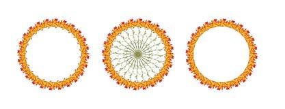 De cirkelreeks van de Bloemcollage Stock Foto