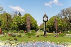 De Cismigiu trädgårdarna (Parcul Cismigiu) i Bucharest Arkivfoton