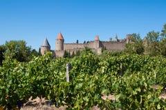 De citadel van Carcassonne van de wijngaarden wordt gezien die Stock Fotografie