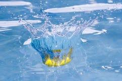 De citroen duikt stock foto