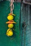 De citroen en de Spaanse pepers bonden samen met een draad, die ook als totka of nazar battu wordt bekend royalty-vrije stock foto's
