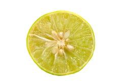 De citroen isoleert op witte achtergrond Royalty-vrije Stock Afbeeldingen