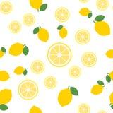 De citroen snijdt naadloos patroon op witte achtergrond Fruitcitrusvrucht Elementen voor menu Vector illustratie - Het vector stock afbeeldingen