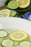 De citrusvrucht doorweekt Royalty-vrije Stock Afbeeldingen