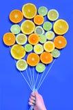 De citrusvrucht snijdt vruchten concept stock afbeeldingen