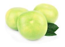 De citrusvrucht van de pompelmoes Royalty-vrije Stock Afbeelding