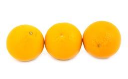 De citrusvrucht van sinaasappelen Royalty-vrije Stock Afbeeldingen