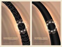 De close-up beschadigde ruw en normaal gezond haar Vectorillustratie voor haircareconcept royalty-vrije illustratie