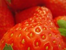 De close-up van aardbeien Stock Afbeeldingen