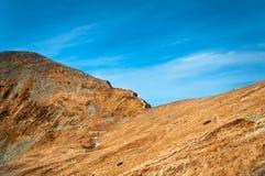 De close-up van de bergtop stock foto
