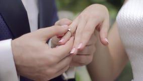 De close-up van bruidegom zet op ringsbruid stock footage