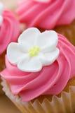 De close-up van Cupcake Royalty-vrije Stock Afbeeldingen
