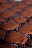 De close-up van de brownie stock afbeeldingen