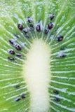 De close-up van de kiwi Royalty-vrije Stock Afbeelding
