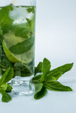 De close-up van de Mohitococktail Royalty-vrije Stock Foto