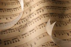 De Close-up van de Muziek van het blad. stock afbeelding