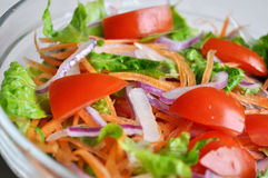 De close-up van de salade Royalty-vrije Stock Foto's