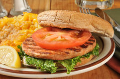 De close-up van de zalmhamburger Stock Foto
