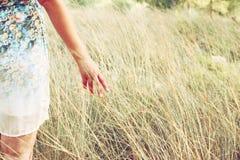 De close-up van een vrouw overhandigt wat betreft lang gras op gebied Selectieve nadruk royalty-vrije stock afbeelding