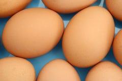 De close-up van eieren stock foto