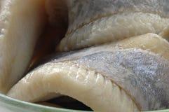 De close-up van haringen Royalty-vrije Stock Foto's
